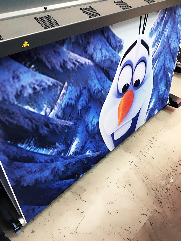 stampa tenda frozen